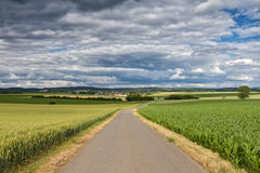 Country lane surrounded by corn and barley fields Stock Images