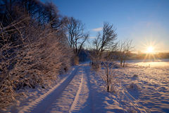 Country lane toward the sun in winter. Country lane toward the sun on a sunny early winter morning royalty free stock photos