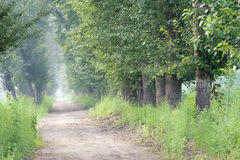 Country lanes Royalty Free Stock Photography