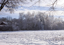 Country lansdscape with snow Stock Images