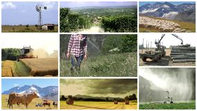 Country life and farming montage stock footage