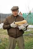 Country man with firewood Stock Image