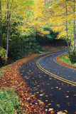 Country mountain road surrounded by colorful autumn trees Stock Photography