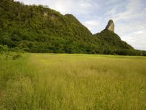 Country is mountain in Thailand Royalty Free Stock Photos