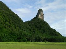 Country is mountain in Thailand Stock Photography