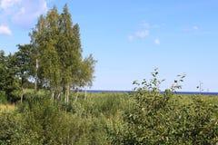 Country near the lake Ladoga stock photos