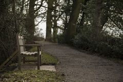 Country park bench. Stock Photos