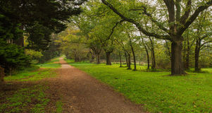 Country Path. Lonely country path in Somers, Victoria Royalty Free Stock Photos