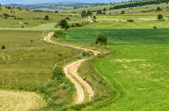 Country path in the Lozere mountains Royalty Free Stock Photography