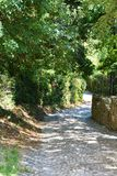 Country path to Rocca castle, in Asolo, Italy Royalty Free Stock Photo