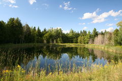 Country Pond. Pond in the Eastern Townships, Quebec, Canada Royalty Free Stock Image