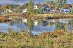 Country pond in HDR Royalty Free Stock Photo