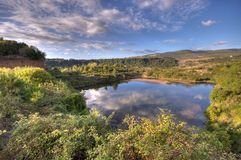 Country pond. A pond in an idyllic country landscape with nice clouds reflections Royalty Free Stock Photo