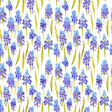 Country Provence Vintage Romantic Pattern Stock Photos
