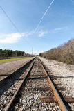 Country railroad in forest Stock Photography