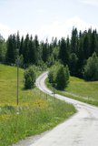 Country raoad. Winding dirt road in the Norwegian countryside Stock Photo