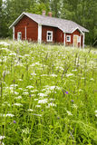 Country Red house Royalty Free Stock Photography