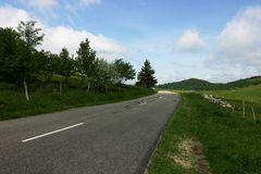 Country road. With a bend, blue sky, green grass and trees Royalty Free Stock Images