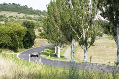 Country road. Trees and country road near Balaton Stock Photo