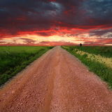 Country road. Road on field over sunset royalty free stock photography