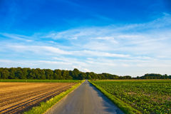 Country Road. And blue sky, with copyspace Stock Photo