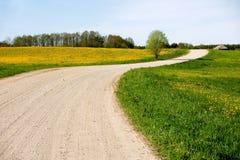 Country Road. Across dandellion field Stock Image