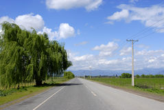 Country road. An asphalt country road in a sunny and cloudy day Royalty Free Stock Photo