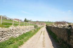 Country Road. View of a Country Road through Farmland Royalty Free Stock Image