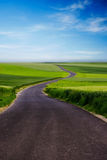 Country road. And green meadow stock photo