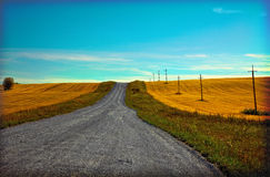 Free Country Road Stock Photography - 15655172