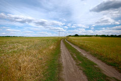 Country road. Under blue cloudy sky Royalty Free Stock Photography