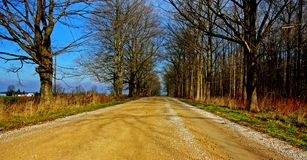 Country Road. A country road in the southwestern Ontario Royalty Free Stock Photo