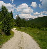 Country road. Going towards the Hasmas mountains in the transylvanian mountains close to the little town Gheorgheni Stock Photography