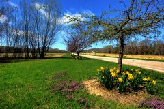 Country Road. A country road against blue sky Royalty Free Stock Photography