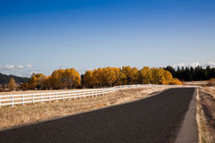 Country Road Royalty Free Stock Images