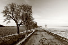 Free Country Road Stock Photography - 23501162