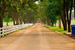 Country road. Through the farm Royalty Free Stock Image
