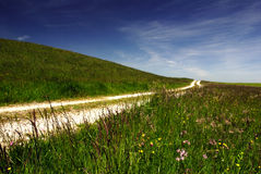 Country Road. A dirt road in the countryside Royalty Free Stock Image