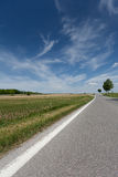 Country road. Asphalt in the nature with sky and clouds Stock Photography
