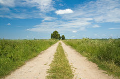 Country road Stock Photography