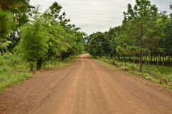 Country road. Thai country road to forest Royalty Free Stock Images