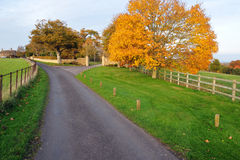 Country Road. Winding Road through a Country Estate in Southwest England Royalty Free Stock Photography
