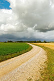 Country road. Royalty Free Stock Photography