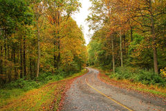 A country road Royalty Free Stock Images