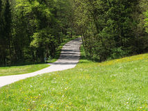 Country road. A country road 5, country road in bavaria, germany Stock Image
