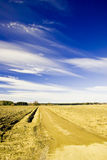 Country road Fotografia Royalty Free