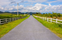 Country Road. Stock Photos