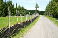 Country road. Country dirt road by a traditional Norwegian fence called Skigard Stock Images