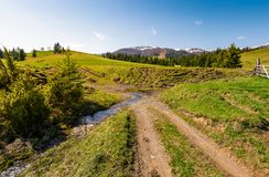 Country road across the brook among grassy fields. Beautiful springtime landscape of Ukrainian alps. mountain ridge with snowy tops in the distance stock photography