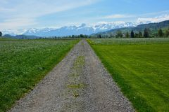 Country road through the agricultural land Stock Photo